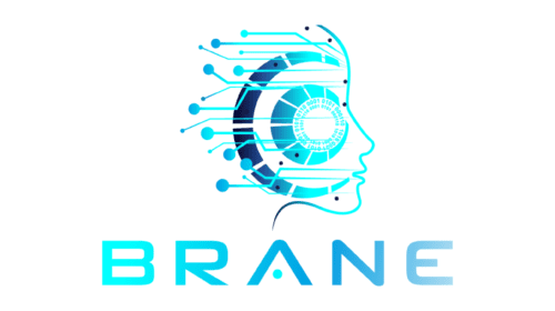 Interview: Paul Carlisle, CEO and Partner of Brane, Inc.